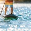paddle-bay